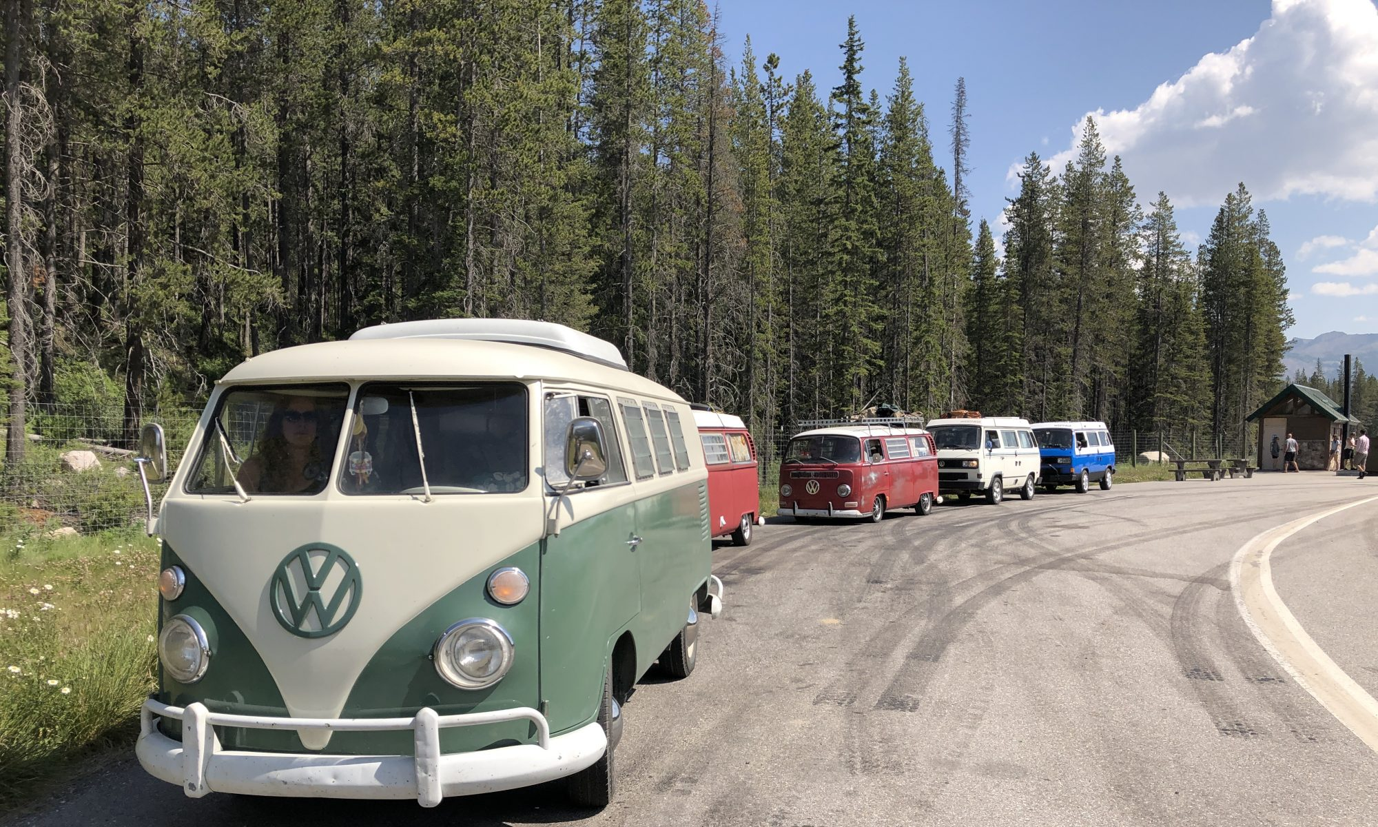CALLING ALL VW BUSES!